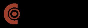cogini-logo-name